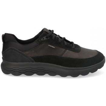 Geox  Sneaker U SPHERICA E günstig online kaufen