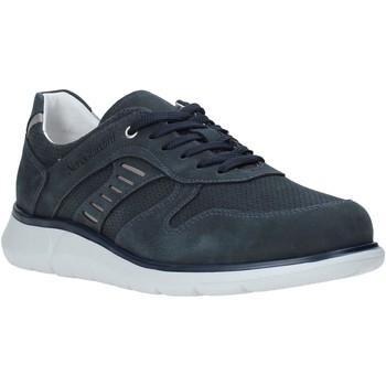 NeroGiardini  Sneaker E001471U günstig online kaufen