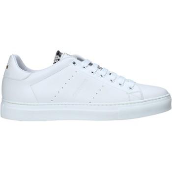Roberto Cavalli  Sneaker 10720/CP A günstig online kaufen