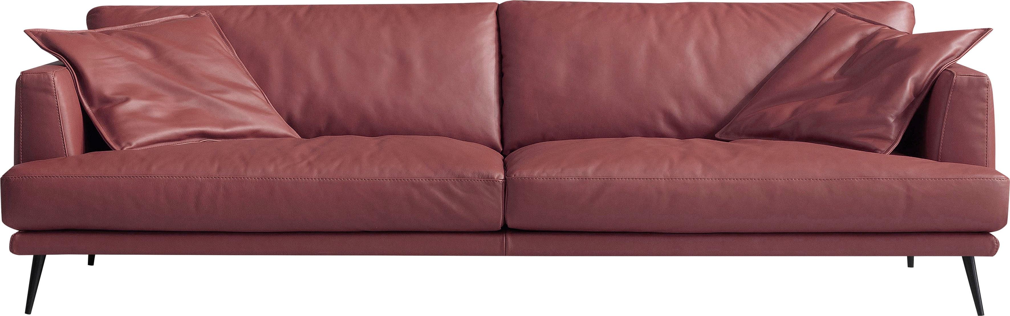 Egoitaliano 2,5-Sitzer Sophia, Daunenfederung, inkl. 2 Kissen günstig online kaufen
