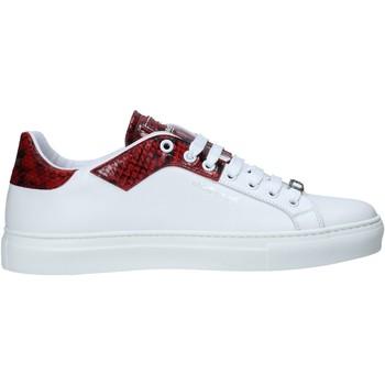 Roberto Cavalli  Sneaker 10728/CP D günstig online kaufen